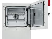 Инкубатор Binder KB 53, 53 л